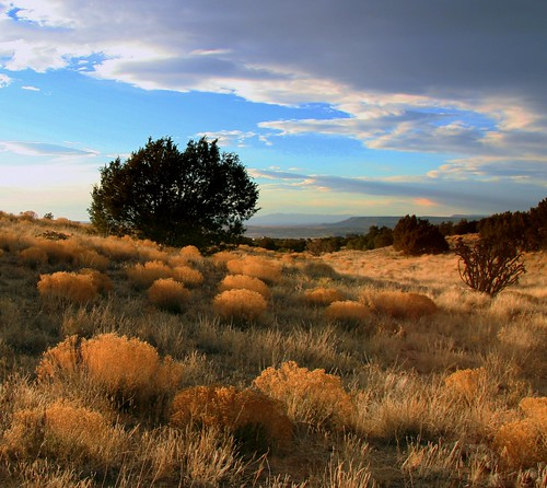 New Mexico Landscape | by Mike Pedroncelli