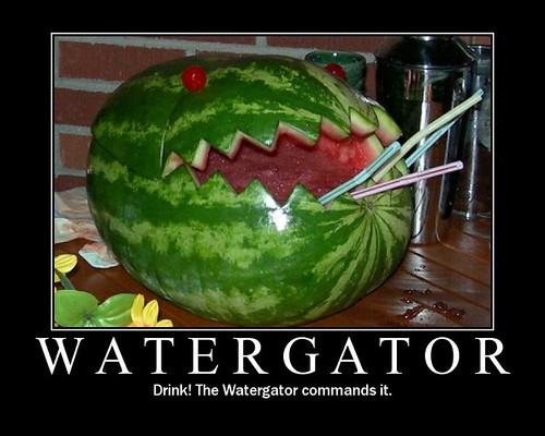 Watergator