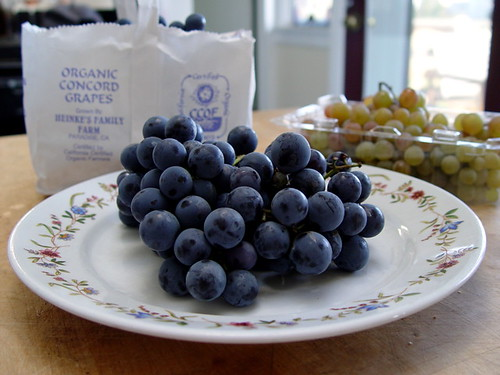 Concord Grapes | by Happy Consumptive