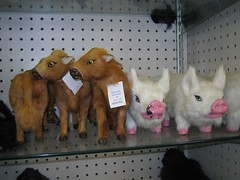 Scary stuff for sale at ozarkland | by ElectraSteph