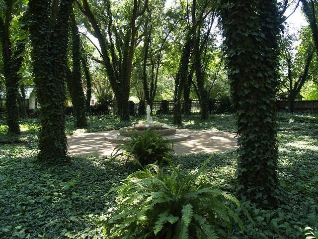 Carol S Garden: Carol's Garden. The Memorial Garden