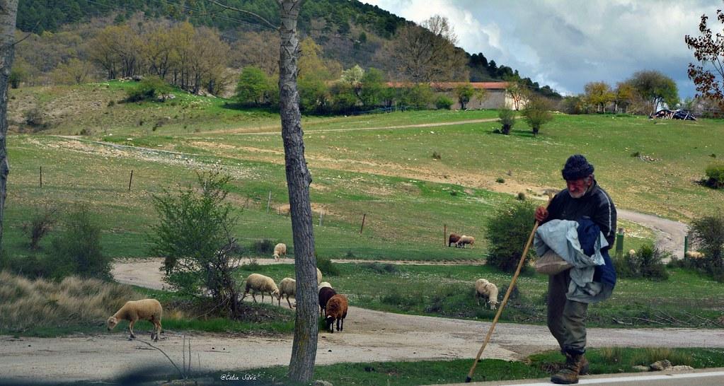 Serranía de Cuenca (20)