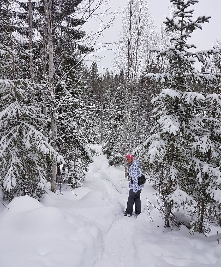 Winter Adventures in Eastern Finland: Vuokatti Hills with Snowshoes | Live now – dream later travel blog
