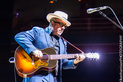 Elvis Costello by Gig Junkies, on Flickr