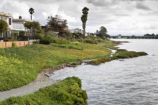 King Tide Floods Trail Near Homes in Alameda | by Ron Rothbart