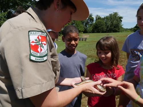 Photo of park ranger showing wildlife to school-aged children