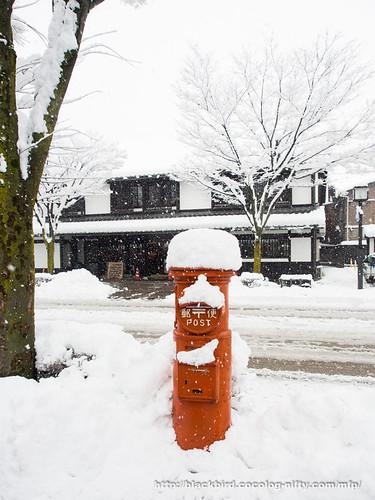 Snowday 1 #01