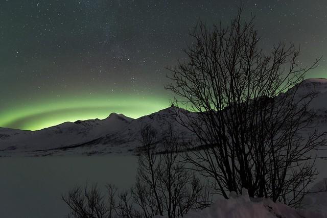 Aurora borealis near Tromso, Norway