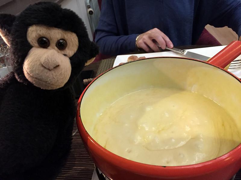 Monkey likes fondue