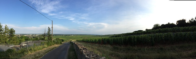view from just outside La Terre d'Or in Beaune