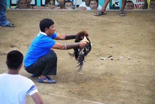 58 Zamboanga (131)
