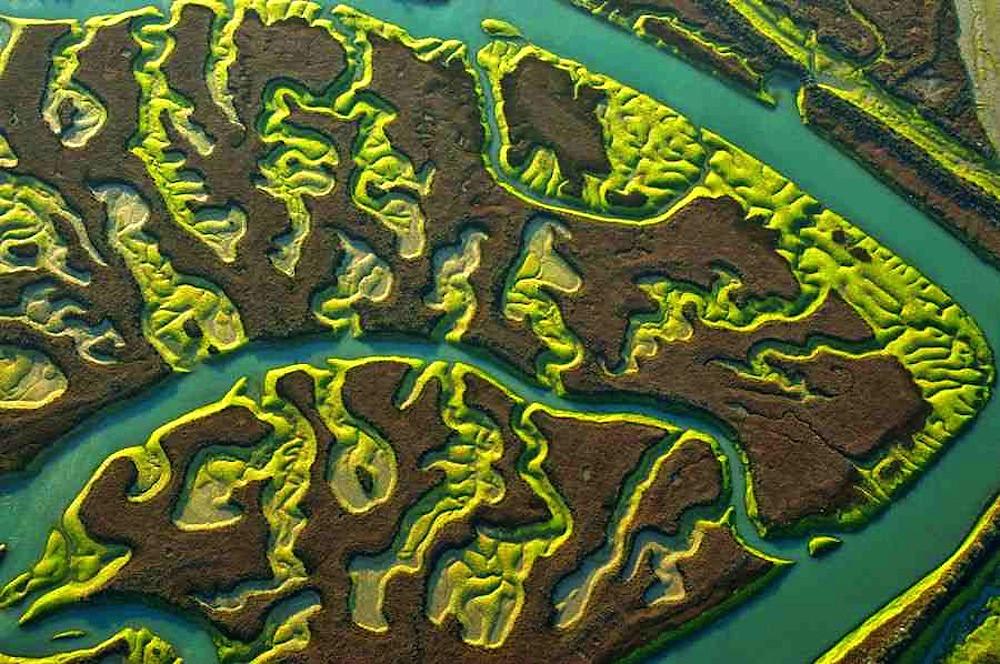Marshland - aerial opening