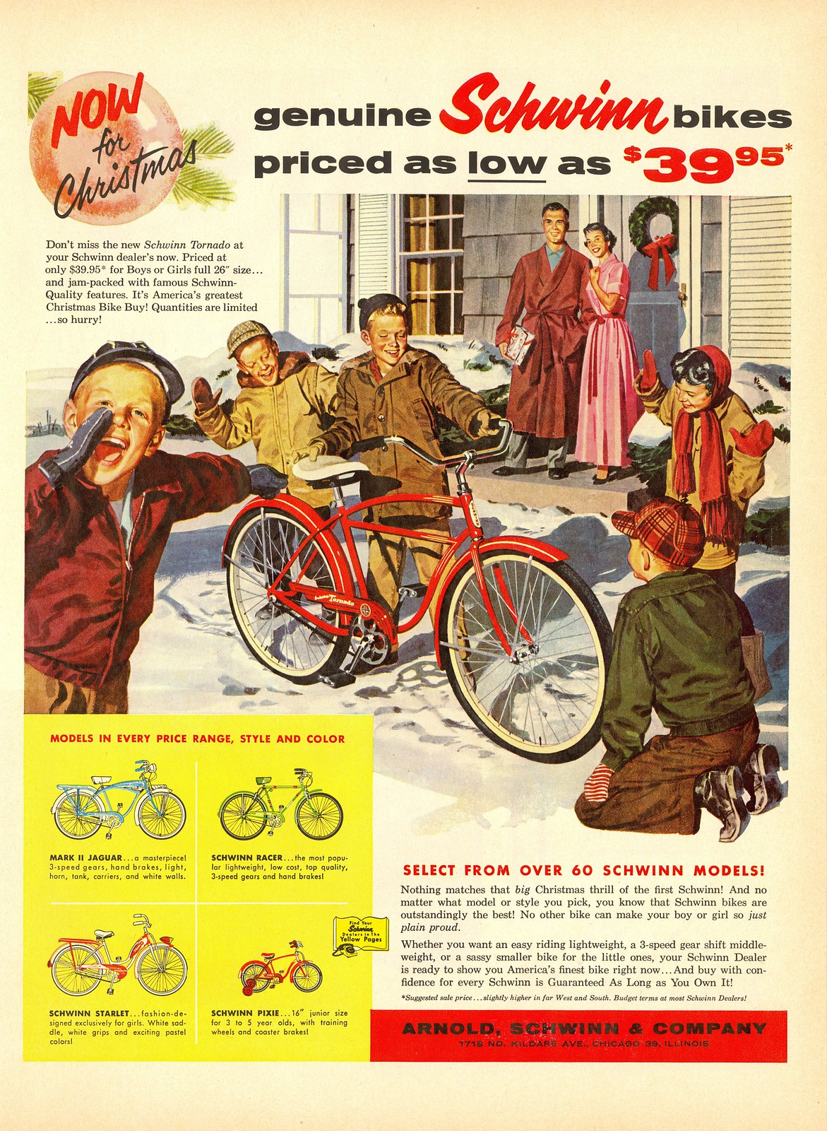 Arnold, Schwinn and Company - published in Life - November 25, 1957