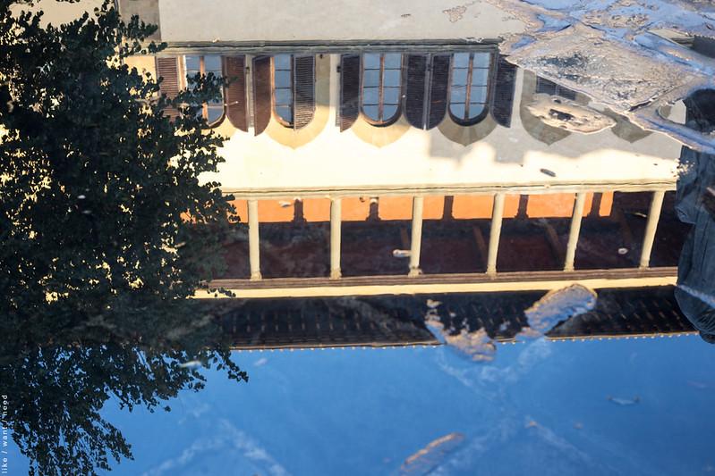 Reflection, Piazza Santo Spirito