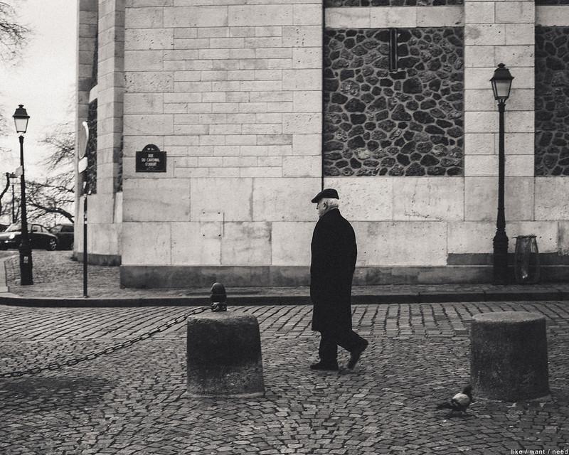 Man & Pigeon