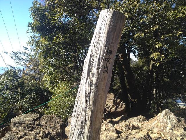 金華山 馬の背登山道 朽木看板