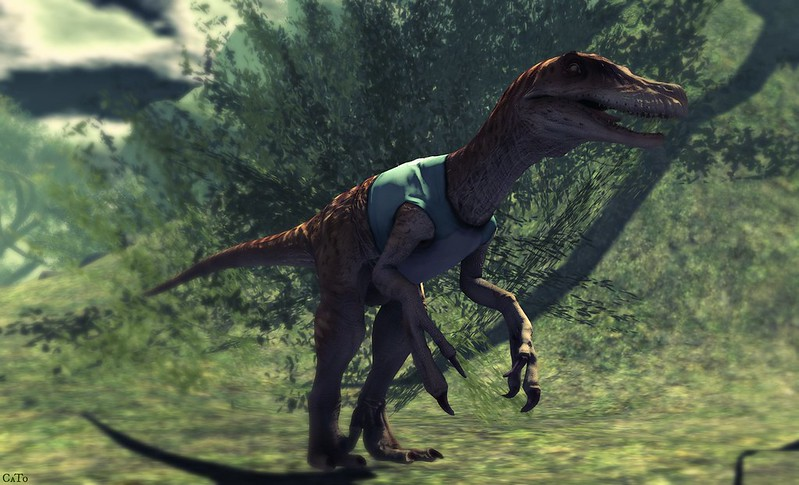 Raptor - I