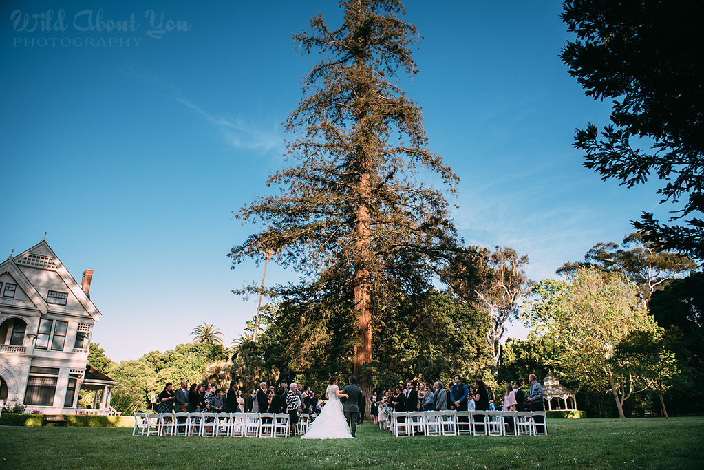 ardenwood-wedding052