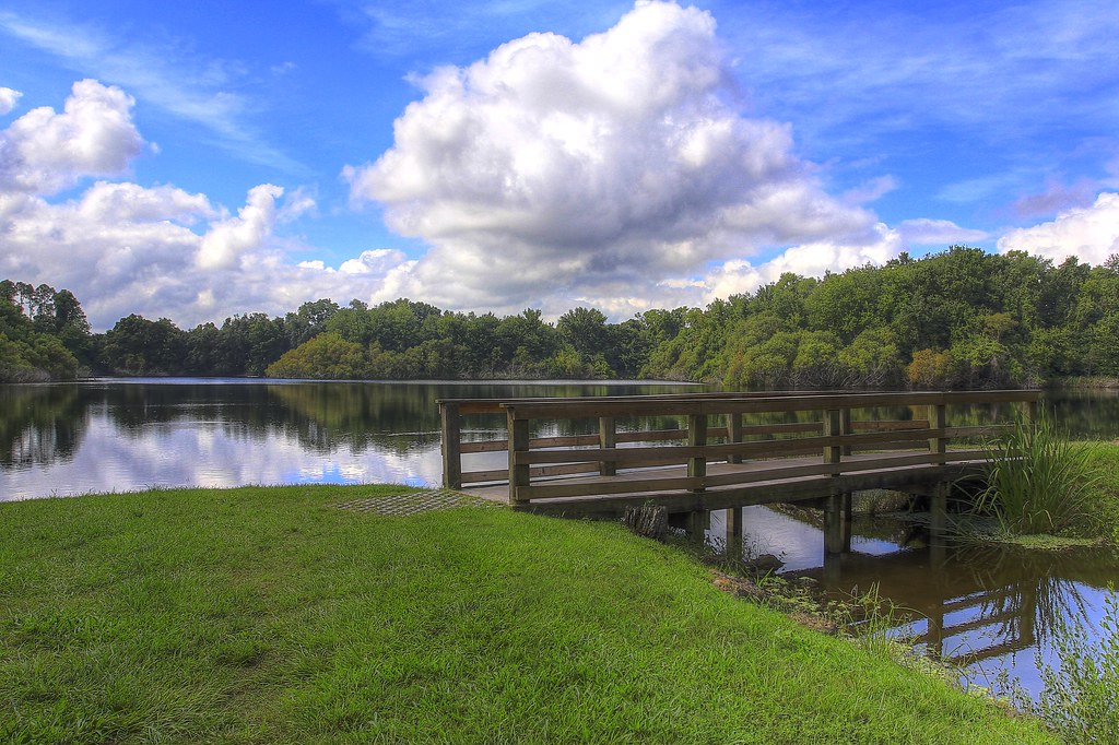 Lake alice at university of florida this is one of my for Fishing in gainesville fl