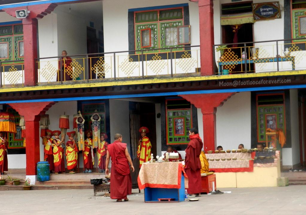 monks, rumtek monastery, gangtok, sikkim, buddhist, rituals