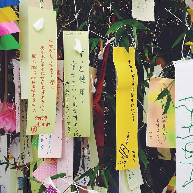 Tanabata matsuri --- Возжелала научиться красиво рисовать суми-е. --- 墨絵が上手になりたいです。