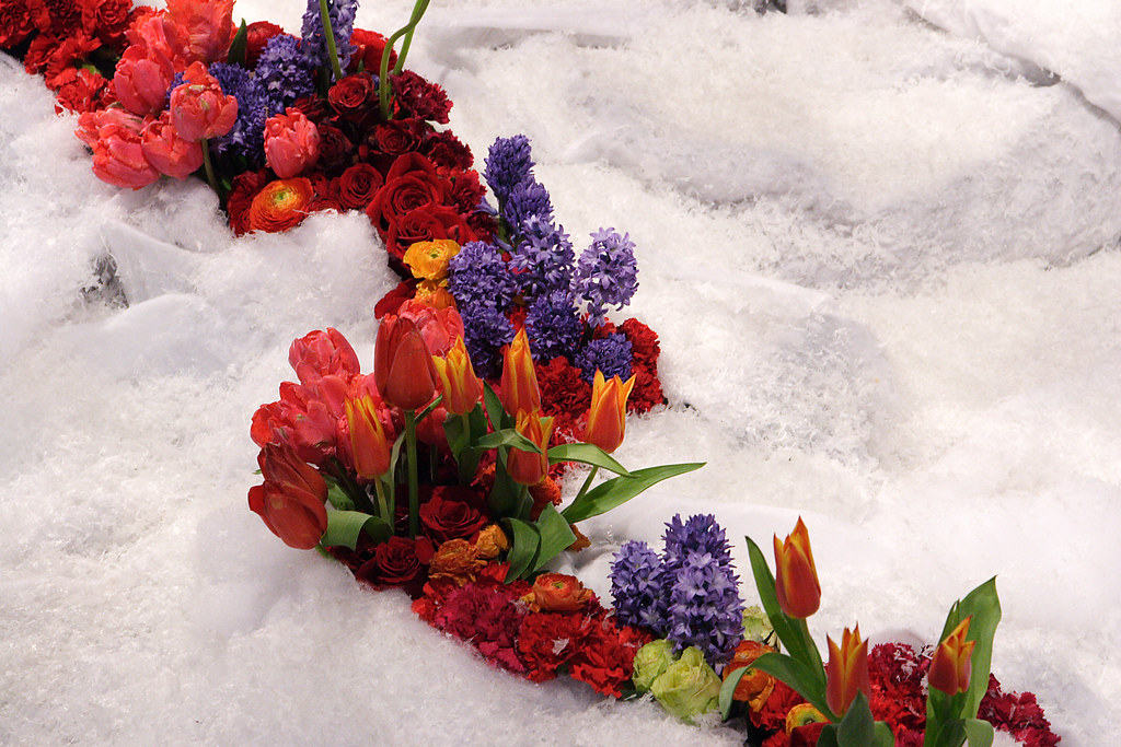 Spring flowers and fake snow i think this was the exhibit flickr by vn spring flowers and fake snow by vn mightylinksfo