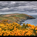 Groudle Glen on the Isle of Man
