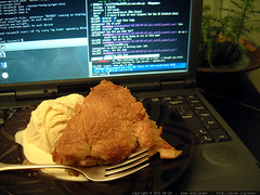 pie ala mode on laptop on irc channel #sf-raves - dscf0334 | by sean dreilinger