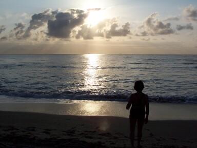 Westin Dawn Beach Resort St Maarten Day Pass