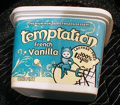 Temptation Vegan Ice Cream | by moria