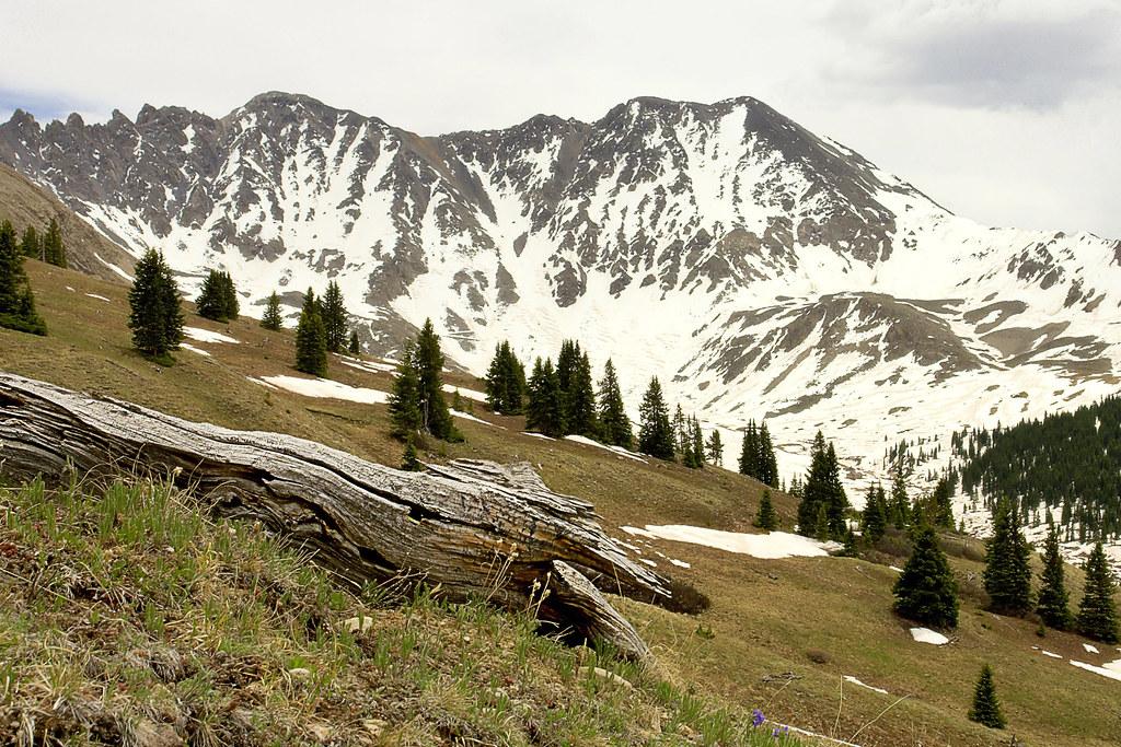 Mount fletcher