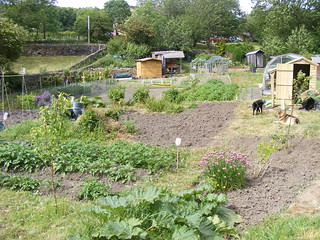 Allotment, from SE
