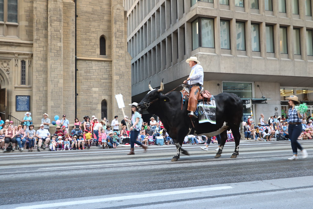 Calgary Stampede Parade 2015 A Few Shots From The