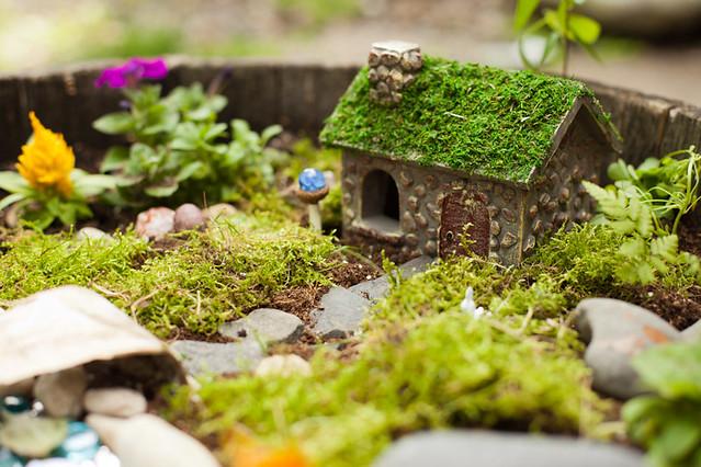 061015 Fairy Garden 006