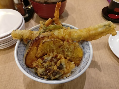 Anago Tendon