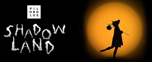 Dr. Phillips Center Presents 'Pilobolus: Shadowland'
