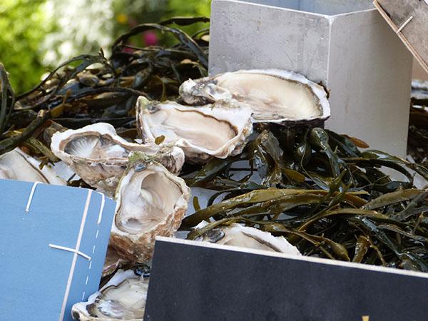 huîtres 1