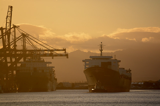 Matson ships and Horizon Consumer