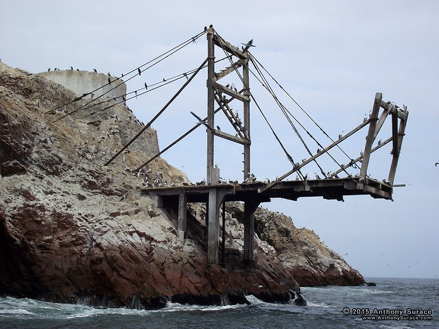 Islas Ballestas, PE