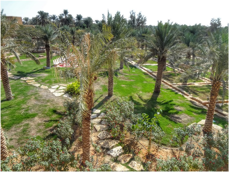 Lush Gardens Of The Historical Diriyah Wadi Hanifah In R