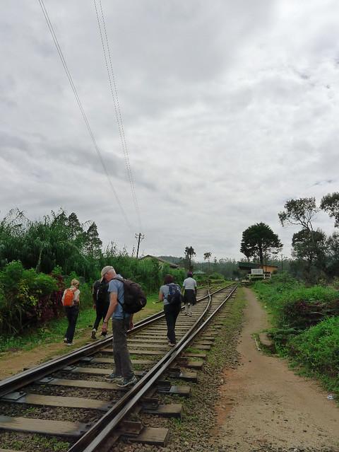 238-train