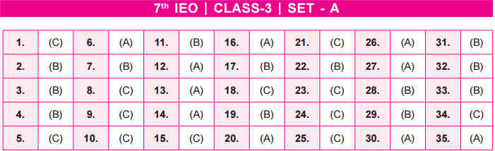 IEO Answer Key class 3