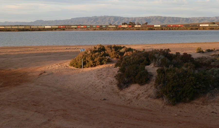 Train between Spencer Gulf and the Flinders Ranges, Port Augusta