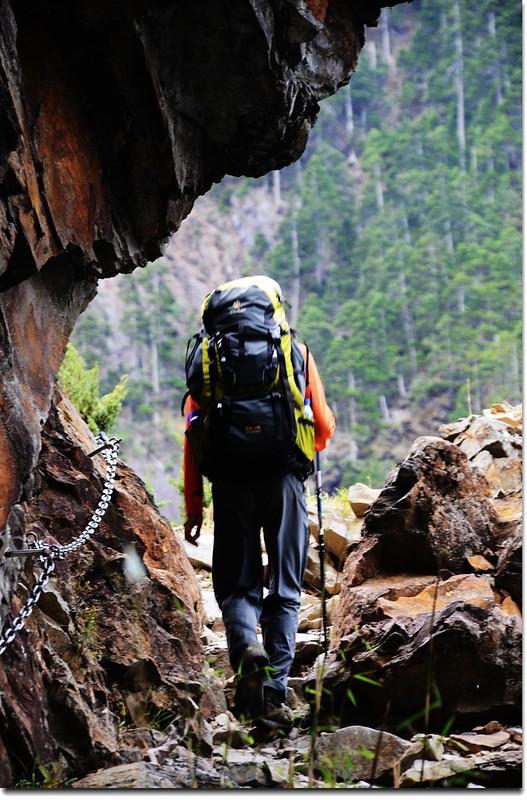 玉山登山步道 12