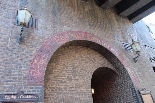 Diagon Alley (44)