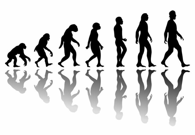 Growth Stocks evolutionary man