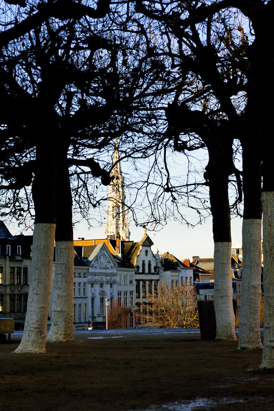Jardin du Mont des Arts - Brussels.1