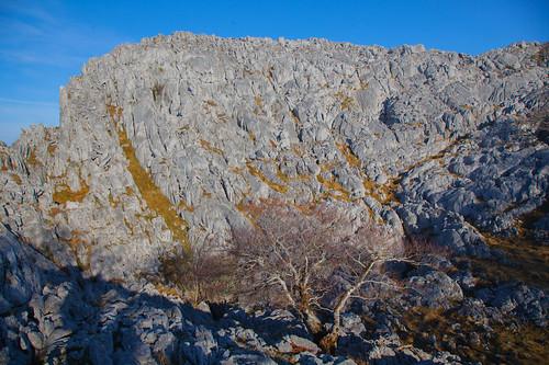 Parque Natural de Gorbeia  #DePaseoConLarri #Flickr -5374