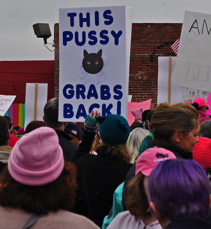 Women March, Norfolk 2017  (21)
