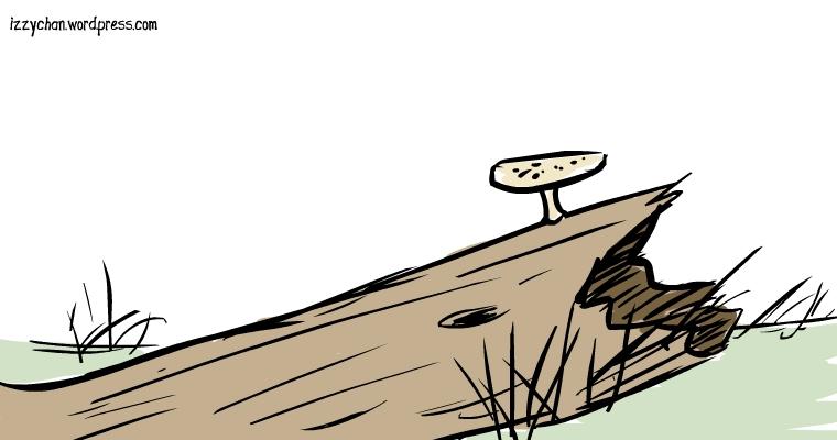 on a log